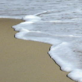 NC beach sand and foam